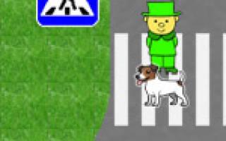 На какой цвет светофора можно переходить дорогу
