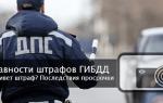 Списание штрафов ГИБДД по сроку давности